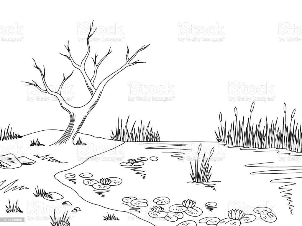 Bog Swamp Graphic Black White Landscape Sketch