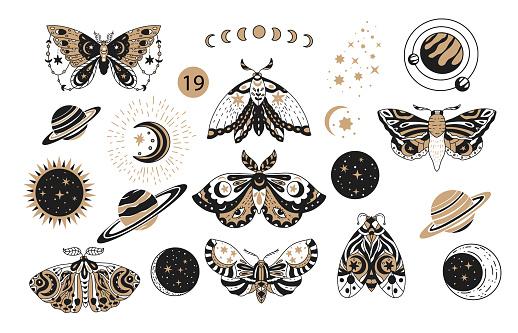 Bohemian boho butterfly decorative vector logo set.