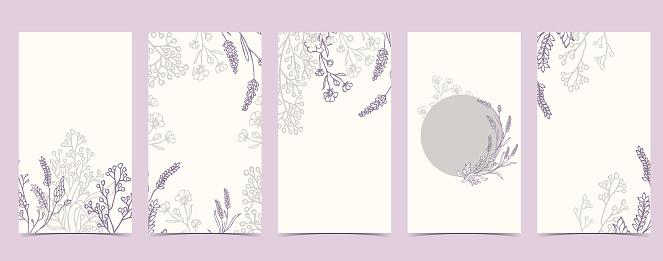 boho background for social media with lavender,flower on white background