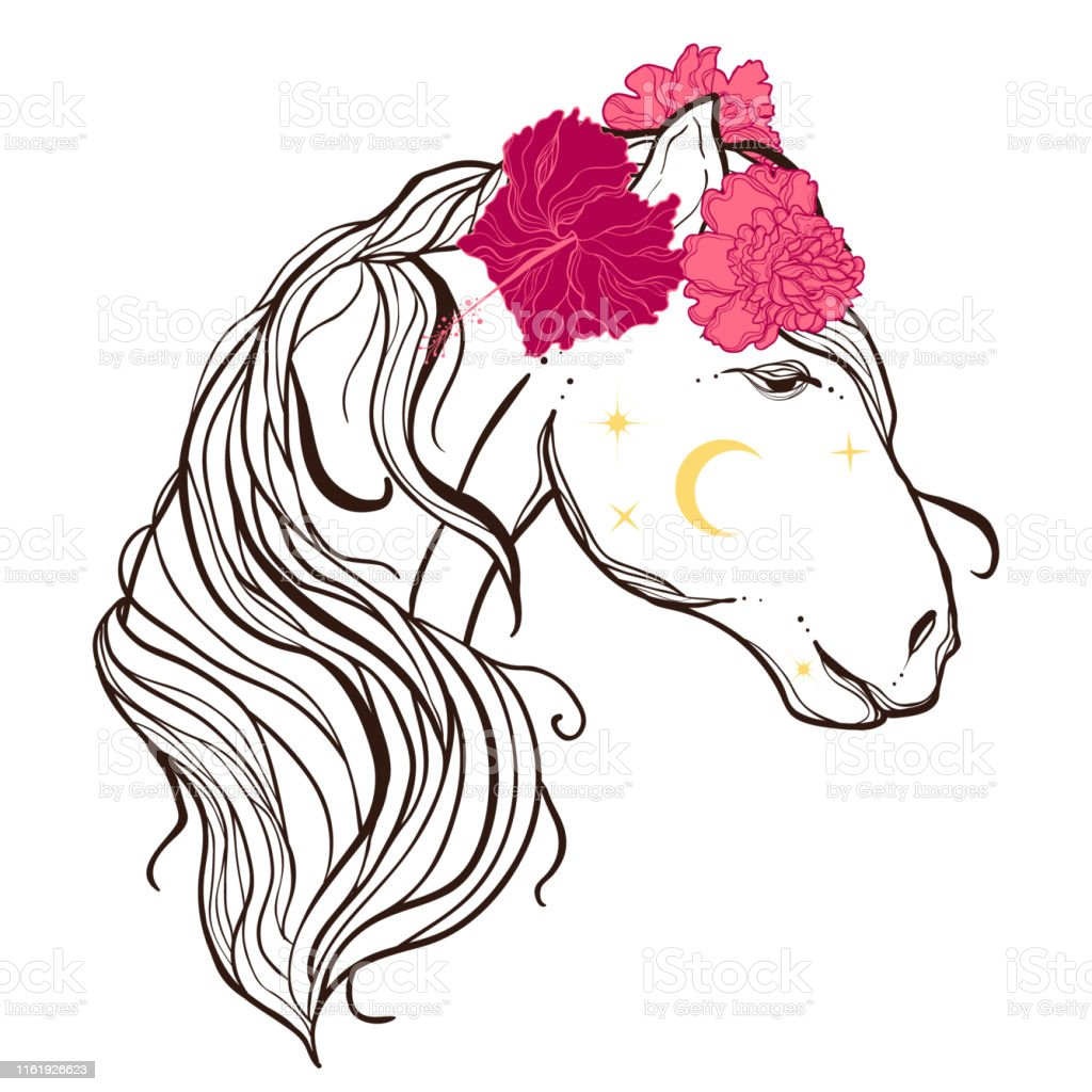 Boho Illustration Of Horse With Flowers Mystic Flash Tattoo Stock Illustration Download Image Now Istock