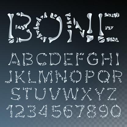 Bone Font Vector. Letters Anatomy. ABC Alphabet. Skeleton Style. Hell Scary Alphabet. Isolated Transparent Illustration