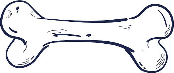 骨 - 骨点のイラスト素材/クリップアート素材/マンガ素材/アイコン素材