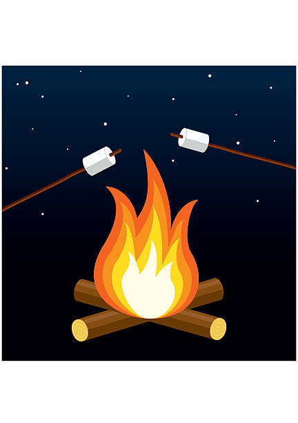 Bonfire with marshmallow. Camping grill. Outdoor campfire night. vector art illustration