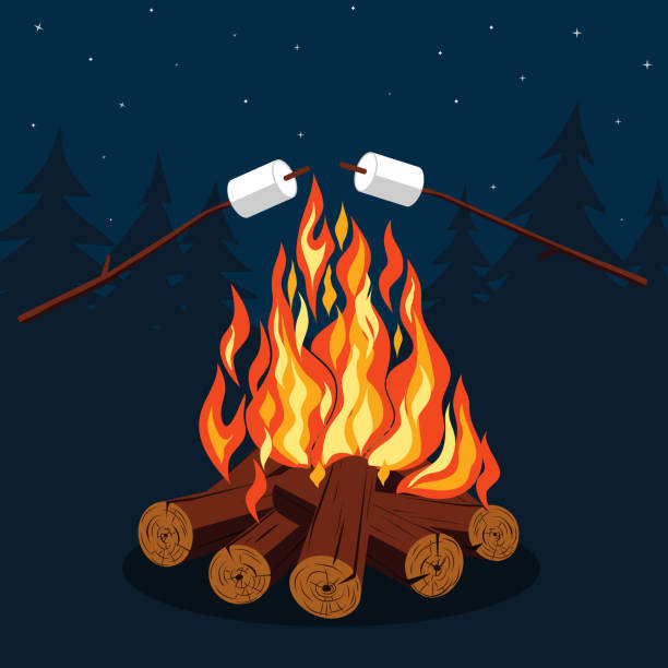 Bonfire With Marshmallow Vector Art Illustration