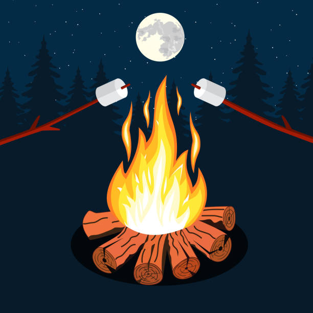 illustrazioni stock, clip art, cartoni animati e icone di tendenza di falò con marshmallow - falò