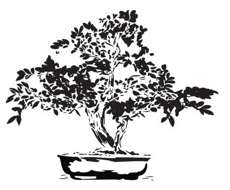 Bonsai illustration in black lines