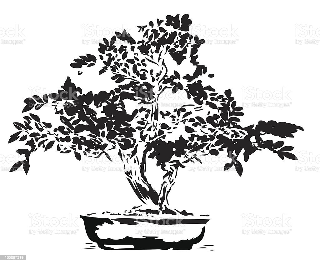 Bonsai-illustration in Schwarze Linien – Vektorgrafik