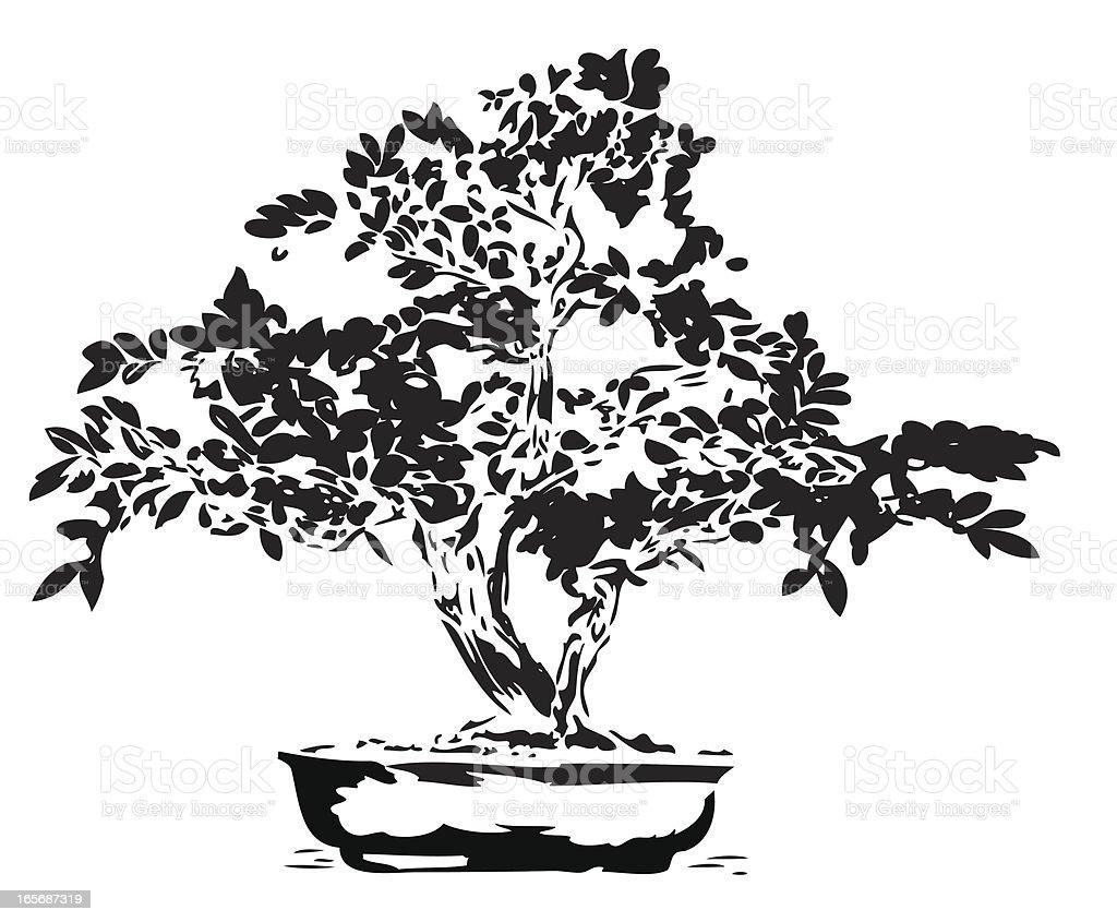 Bonsai illustration in black lines vector art illustration