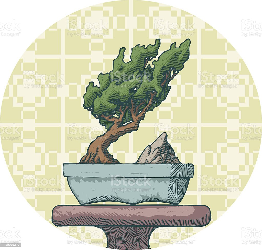 Bonsai On Display vector art illustration