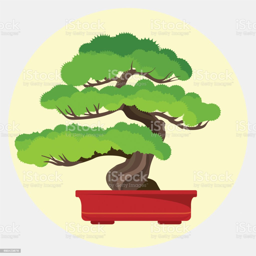 Bonsai Pinie dekorativen kleineren Baum wächst in Container-Vektor-illustration – Vektorgrafik