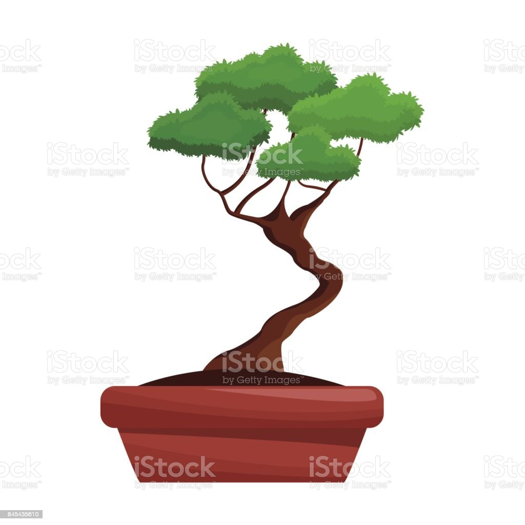 bonsai pot tree nature decoration vector art illustration