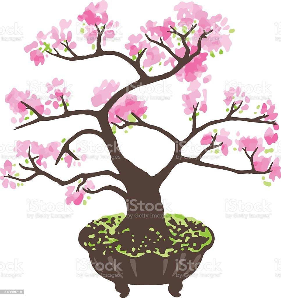 Bonsai Sakura Vector Illustration Stock Illustration Download Image Now Istock