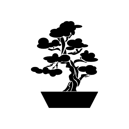 Bonsai silhouette, decorative tree in flower pot, japanese bonsai culture, plant cultivation icon