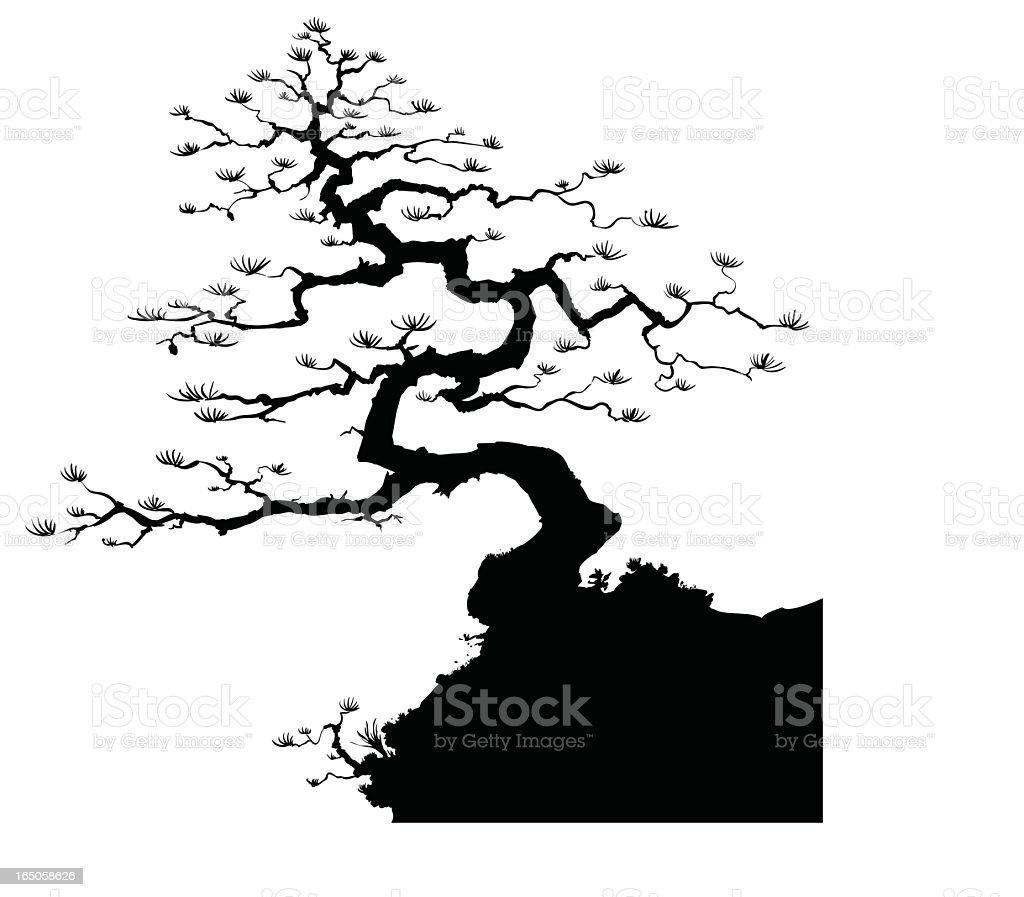 Siluetta dei bonsai - illustrazione arte vettoriale