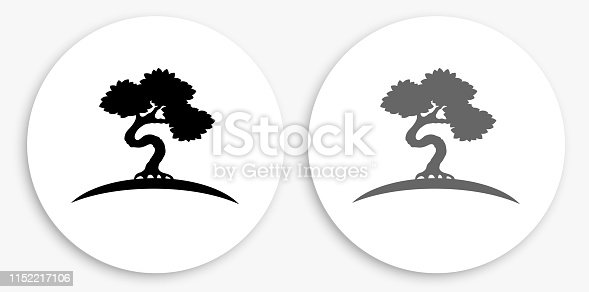 Bonsai Tree Black and White Round Icon. This 100% royalty free vector illustration is featuring a round button with a drop shadow and the main icon is depicted in black and in grey for a roll-over effect.