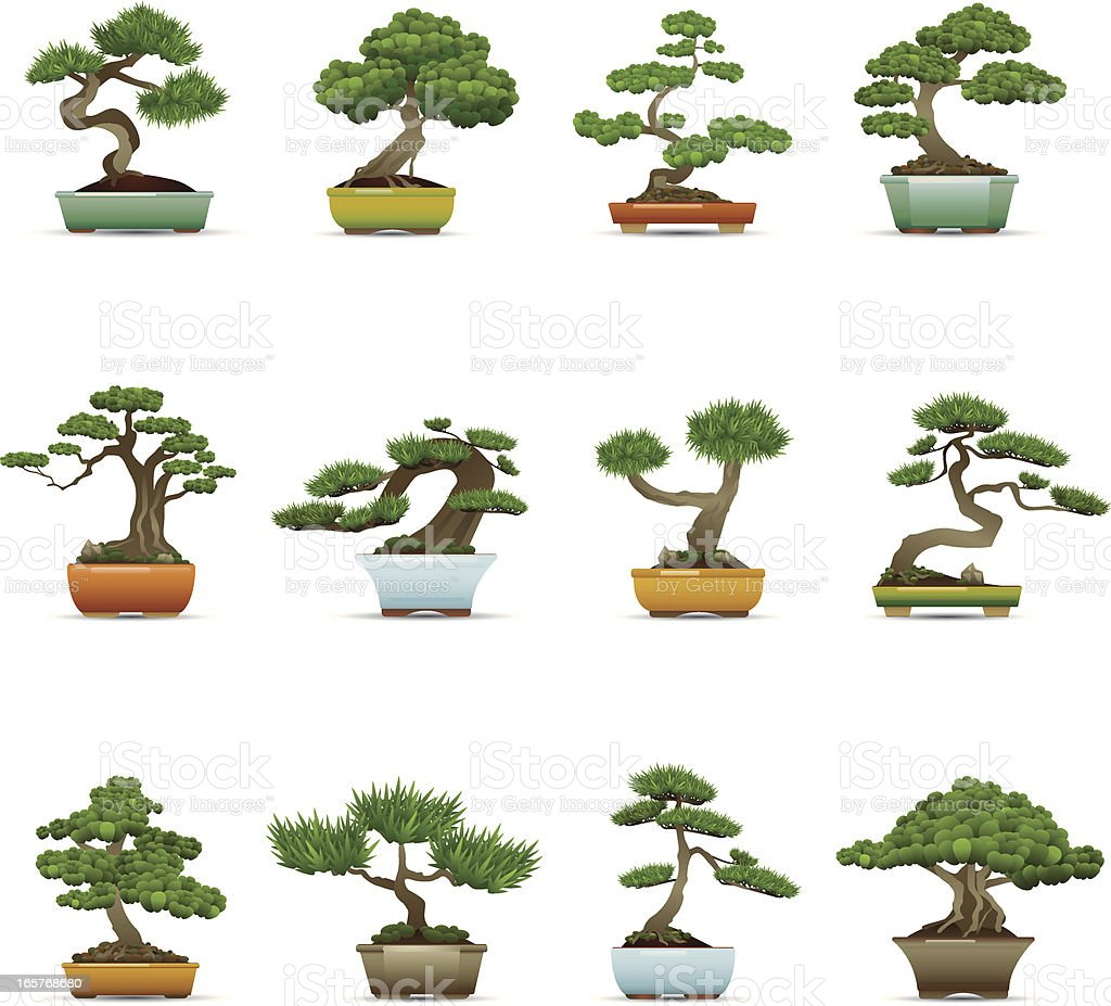 Bonsai-Icons – Vektorgrafik