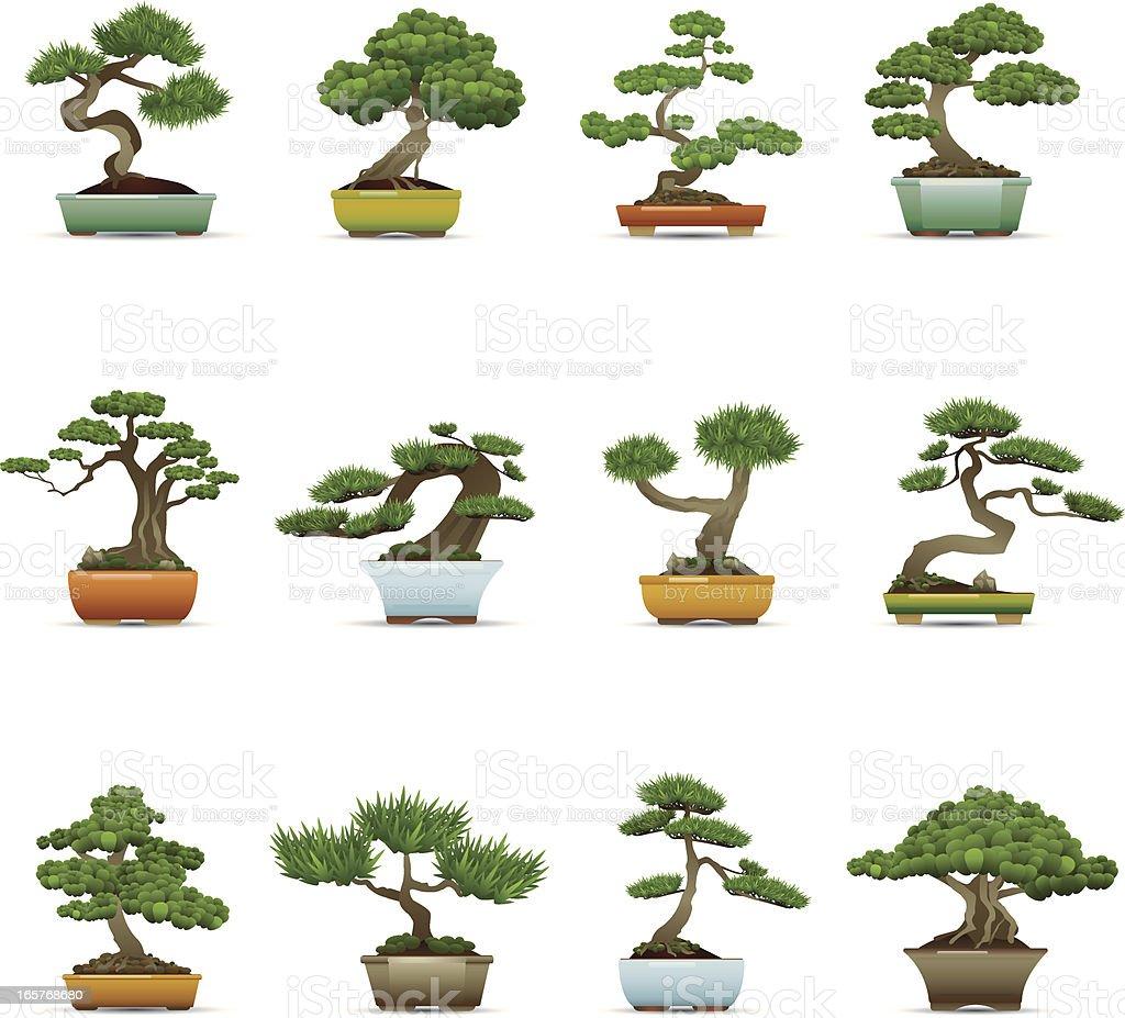 Bonsai Tree Icons vector art illustration