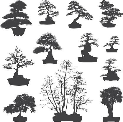Bonsai tree silhouettes set
