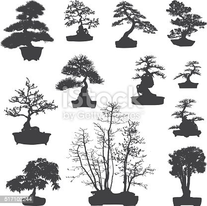 Diferent type of bonsai tree silhouettes set. Eps8. Isolated on white.