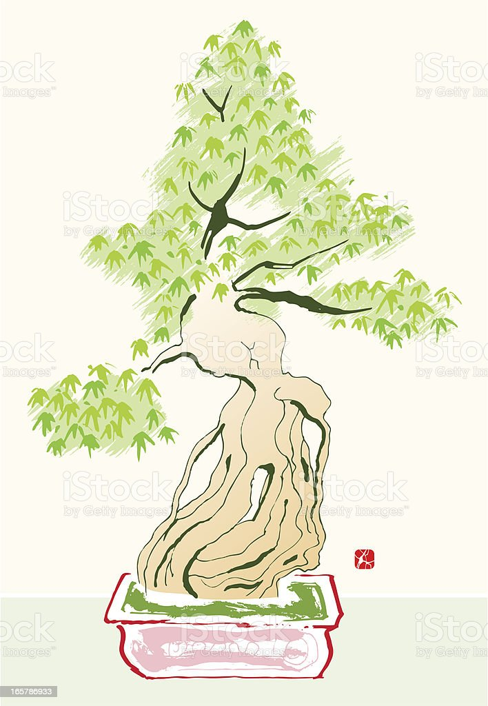Bonsai Tree royalty-free stock vector art