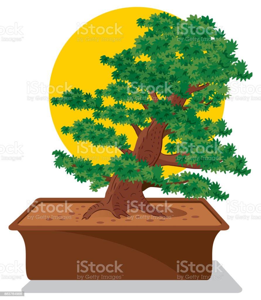 Bonsai Tree Stock Illustration Download Image Now Istock