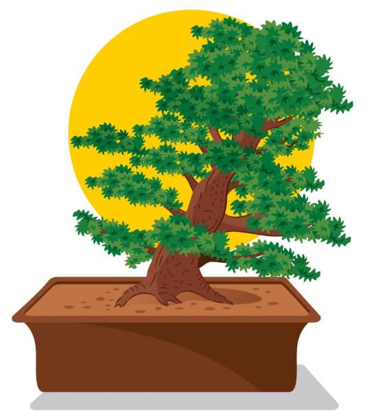 盆景樹 - hiroshima 幅插畫檔、美工圖案、卡通及圖標