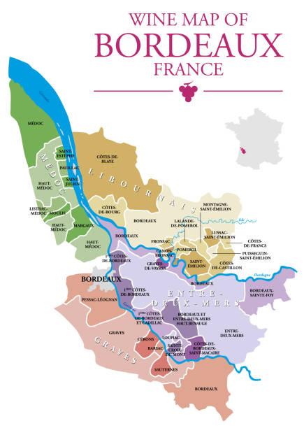 Carte des vins de Bordeaux - Illustration vectorielle