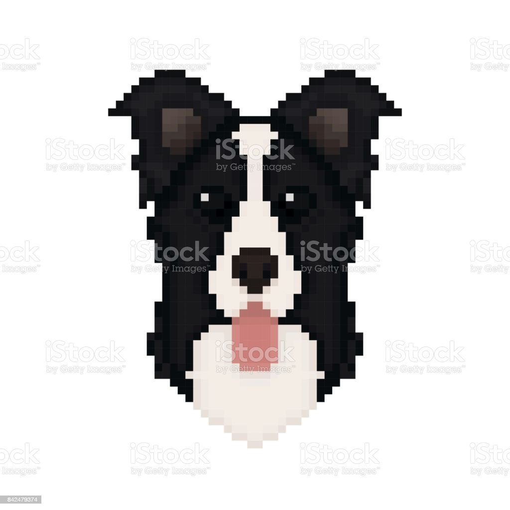 Border Collie Dog Head In Pixel Art Style Vector