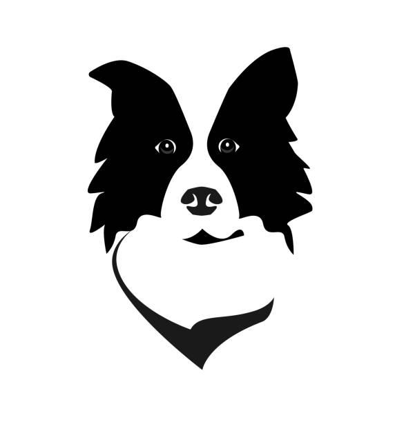 Border Collie head  icon vector Border Collie head icon vector. Dog face simple design. sheepdog stock illustrations
