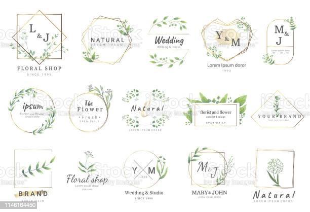 Fleur De Bordure Pour Mariage Bannière Badge Impression Produit Paquet Vector Illustration Vecteurs libres de droits et plus d'images vectorielles de Badge