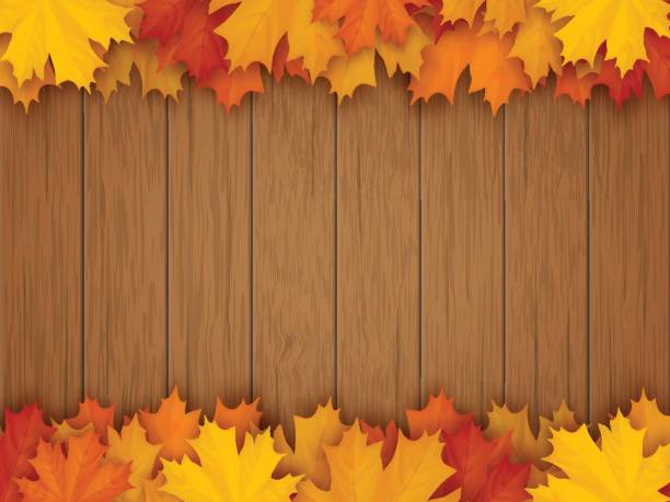 border from fallen maple leaves on wooden background - leaves backgrounds stock illustrations