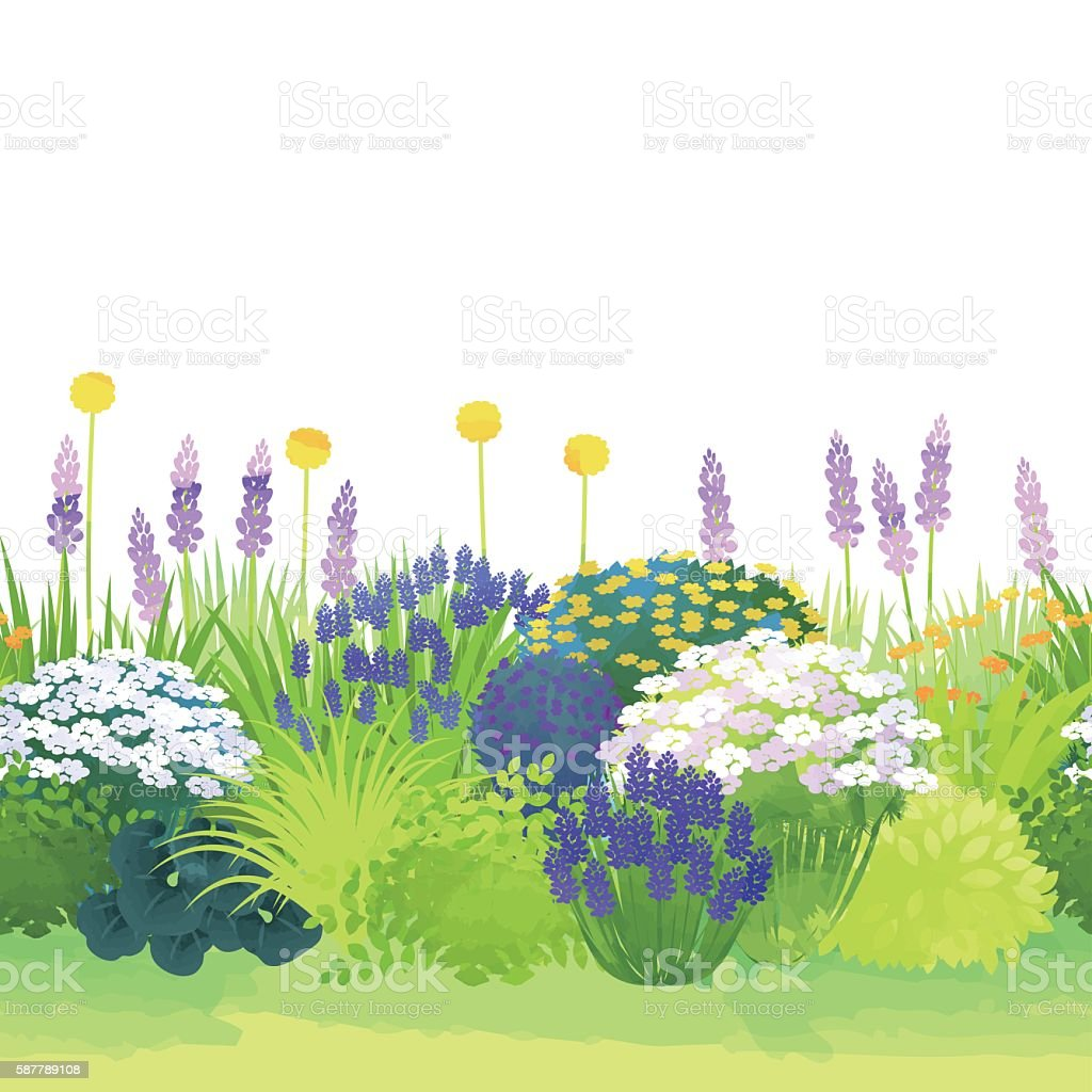 border garden vector art illustration