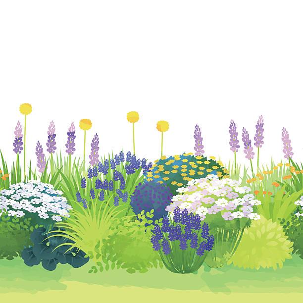 border garden vector art illustration