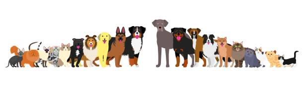 Border of dogs and cats arranged in order of height vector art illustration