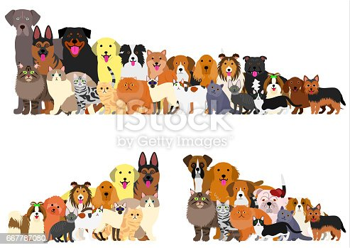 Border of various  dogs and cats arranged in order of height.