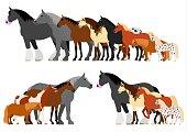 Border of horses set