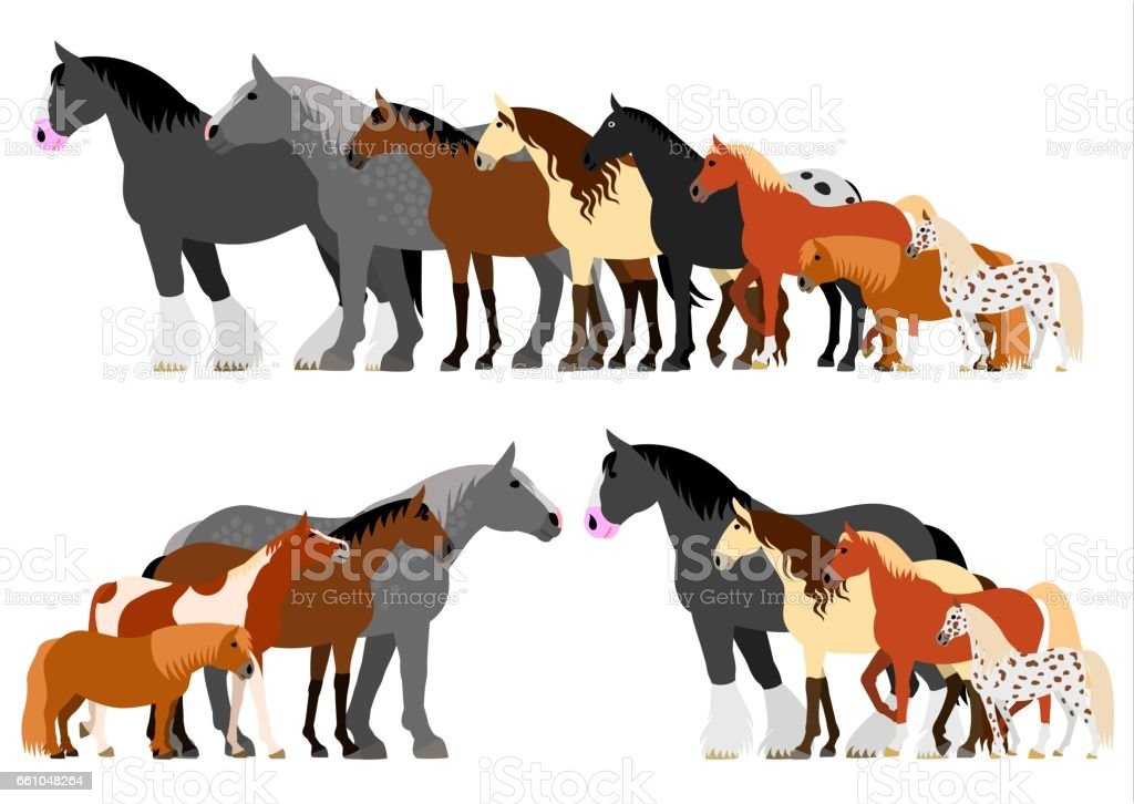 Border of horses set vector art illustration