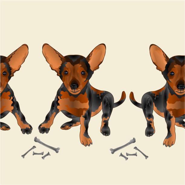 테두리 원활한 배경 개 강아지 작은 행복 갈색 테리어 벡터 일러스트 레이 션 인테리어 디자인, 삽화, 의류, 요리에 사용 하기 위해 포장 - 강아지 실루엣 stock illustrations