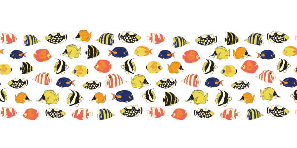 Border tropical reef fish seamless vector tile. Colorful fishes decor. Butterflyfish, Clown Triggerfish, Anemonefish, Angelfish, Clownfish. Drawing marine underwater design for cards, menu, packaging vector art illustration