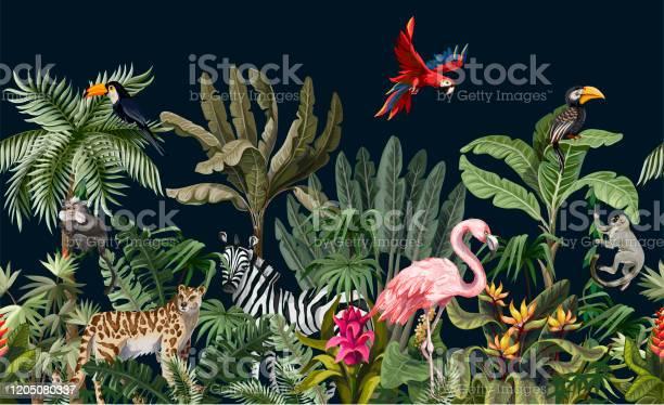 Grenze Mit Dschungeltieren Blumen Und Bäumen Vektor Stock Vektor Art und mehr Bilder von Abstrakt