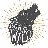 Born wild. Hand drawn wolf illustration with lettering. Design element for poster, t-shirt, emblem, sign. Vector illustration
