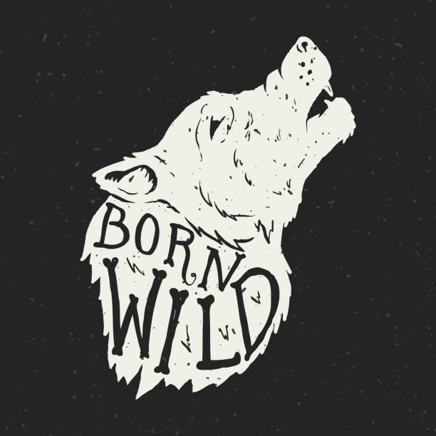 Born wild. Wolf head on grunge background. T-shirt print template Born wild. Wolf head on grunge background. T-shirt print template silhouette of a howling coyote stock illustrations