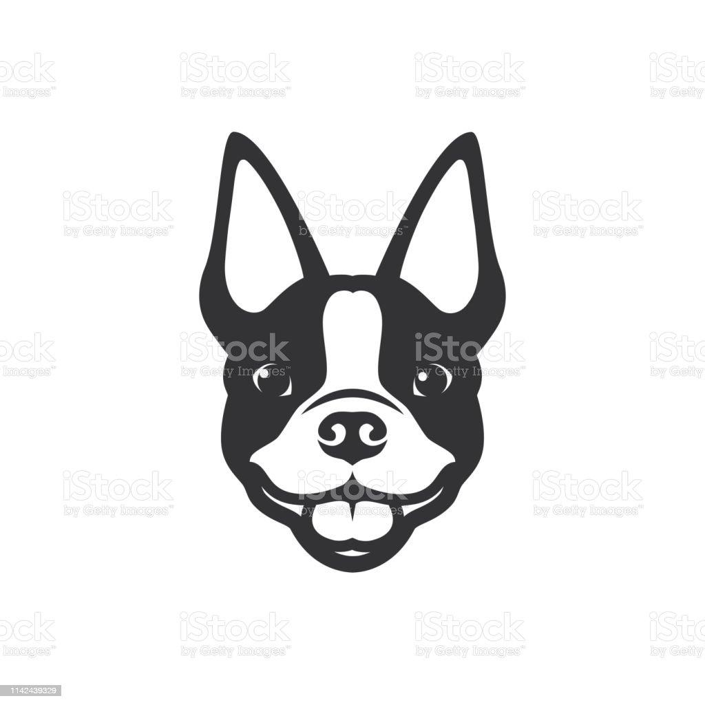 Boston Terrier Dog Vector Illustration ...