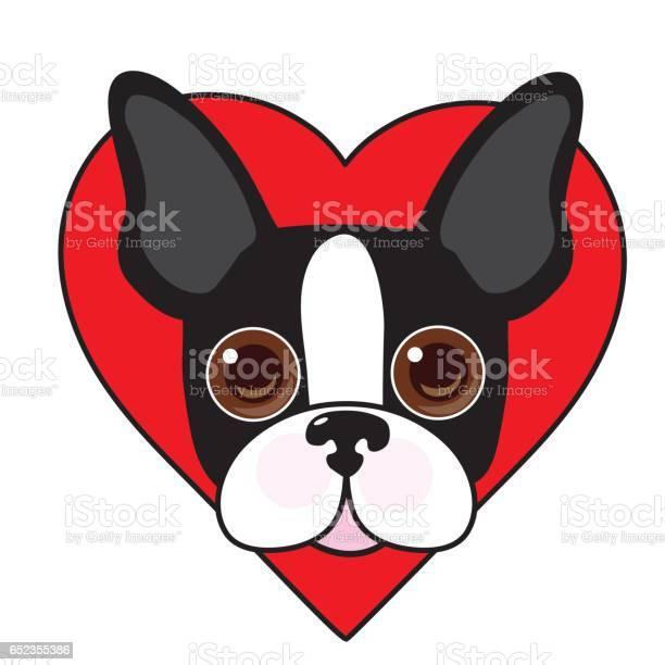Boston terrier face vector id652355386?b=1&k=6&m=652355386&s=612x612&h=fkezhxa4zl3elunmvvcewu 81k7wsfyuvqoloztob9y=