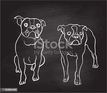 istock Boston Terrier Moods Chalkboard 1130860460