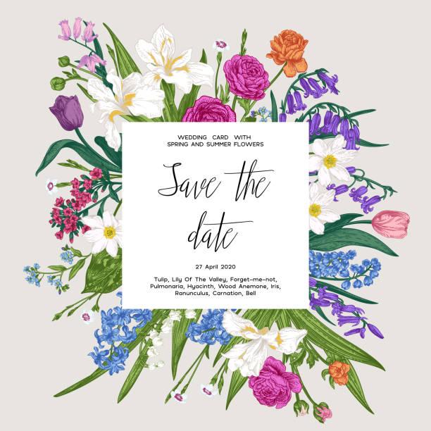 Botanical card. vector art illustration