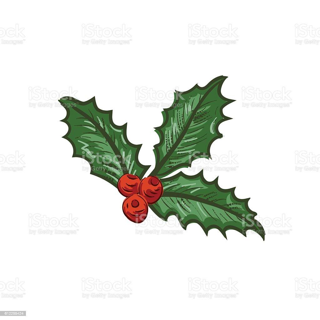 Botanical Christmas Holly Ornament vector art illustration