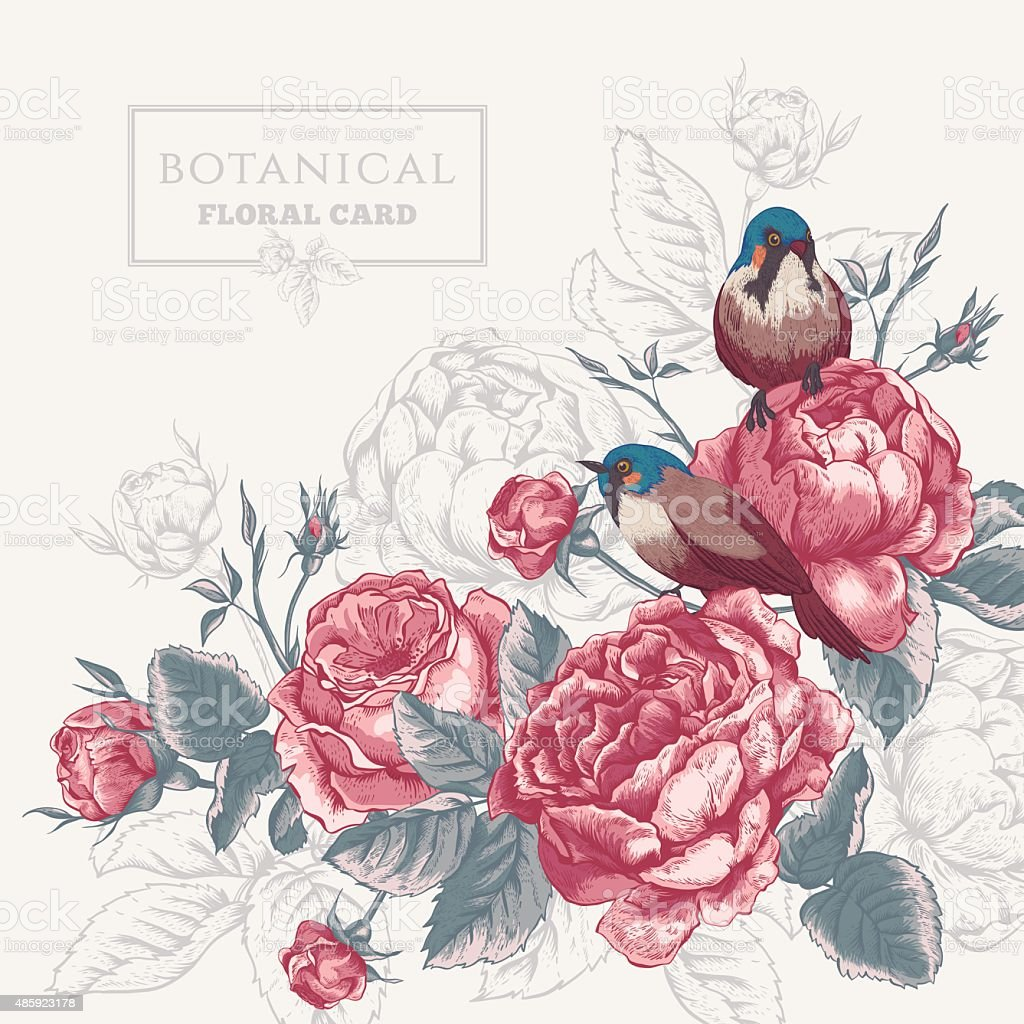 Botanical floral card with roses and birds vector art illustration