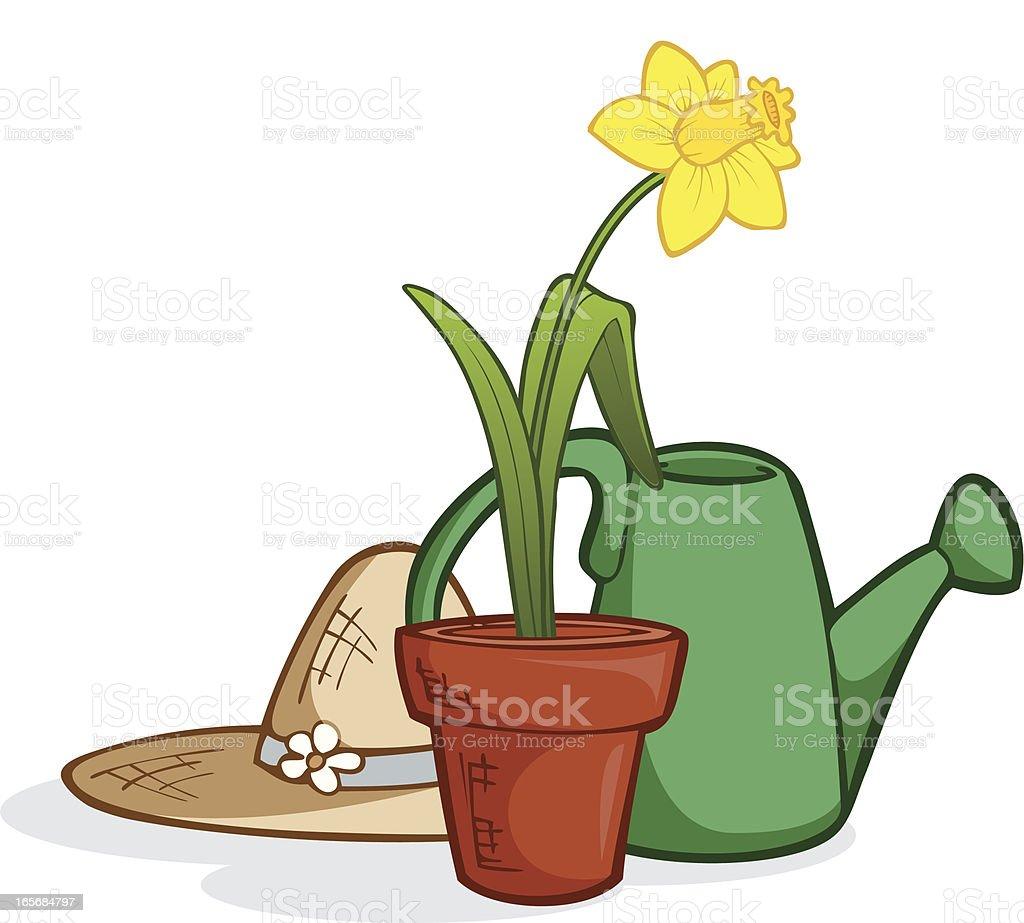 Botanical Hobby - Daffodil royalty-free botanical hobby daffodil stock vector art & more images of botany