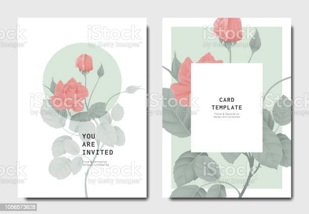 Botanical invitation card template design red rose flowers with on vector id1056573628?b=1&k=6&m=1056573628&s=612x612&h=wtqbfbmu 1vqpib0r8aslmdxxyqfxo7ucbq8ydxbokq=